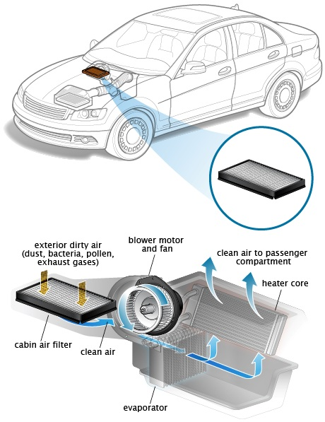Cabin Air Filter/Air Conditional System